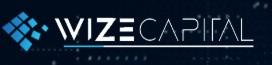 Wize Capital logo